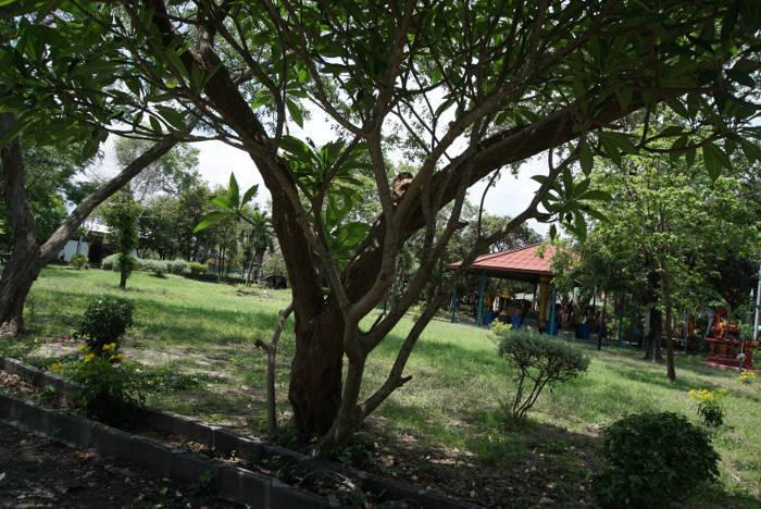 Afbeelding van het hemel gedeelte van de Wang Saen Suk hell garden dat voornamelijk een leeg grasveld is.