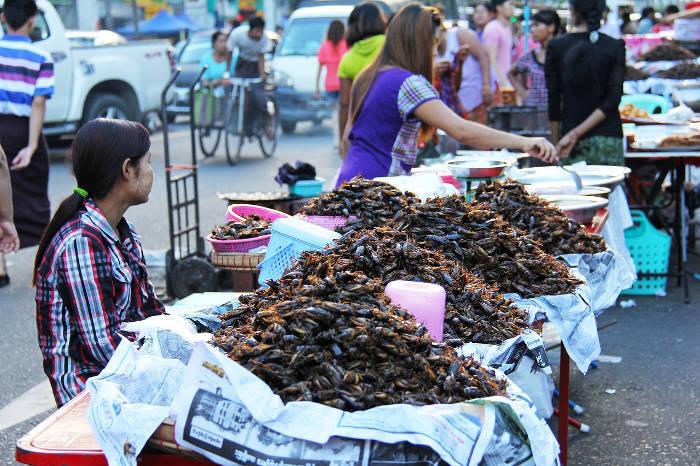 Afbeelding van een straattentje waar kakkerlakken worden aangeboden als lekkernij.