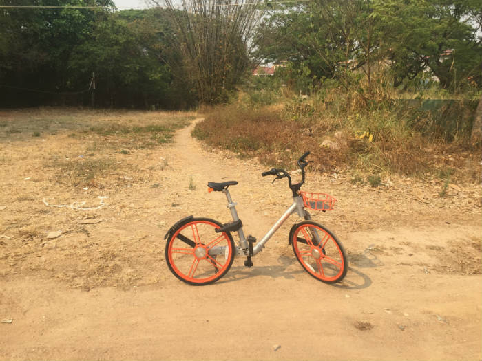 Foto van een Mobike die ergens in een veld in Chiang Mai staat.