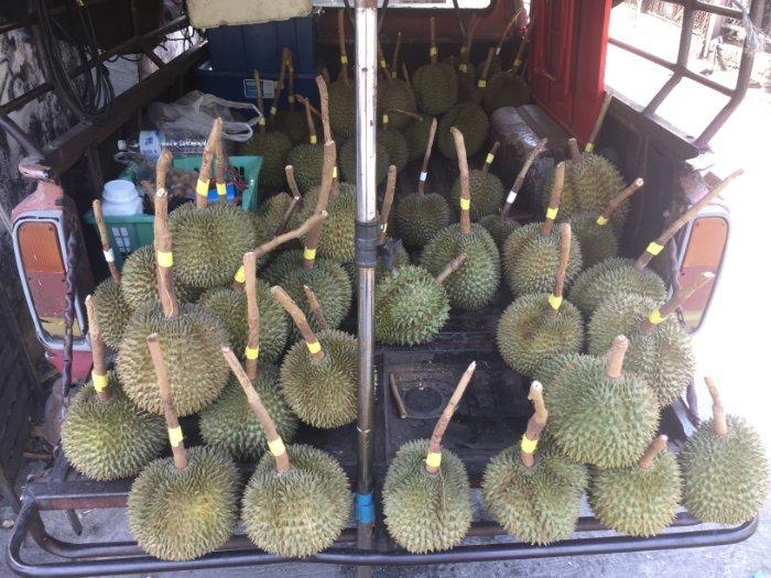 Durian op een wagen in Thailand