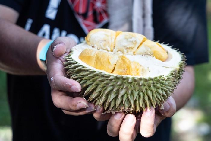 Opengesneden durian